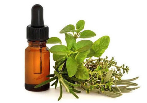 Marjoram essential oil for hangover