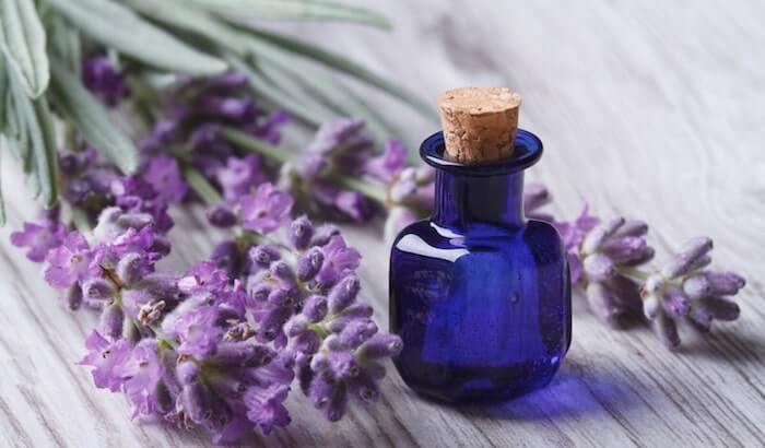 lavender oil hangover