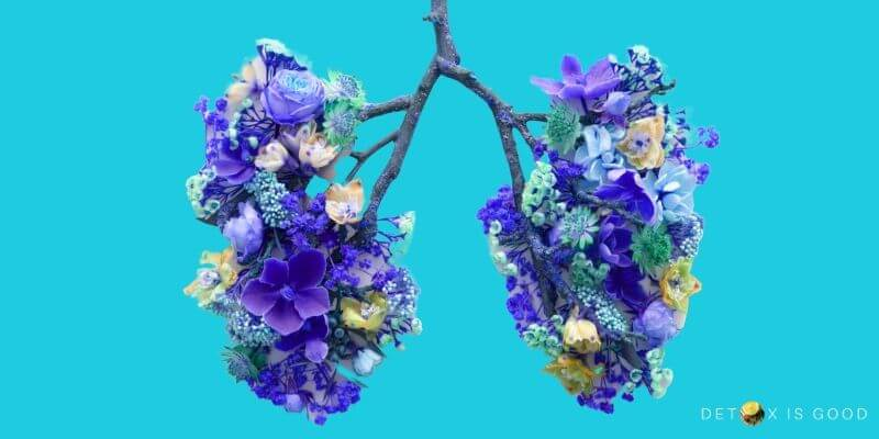 lung health breath